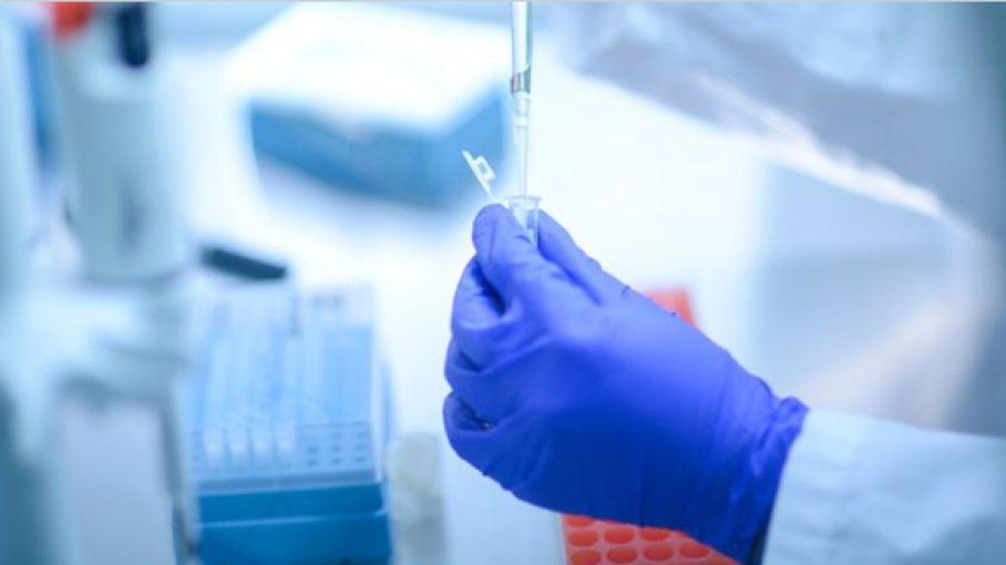 brazil probes bahrat biotech covaxine deal - Satya Hindi